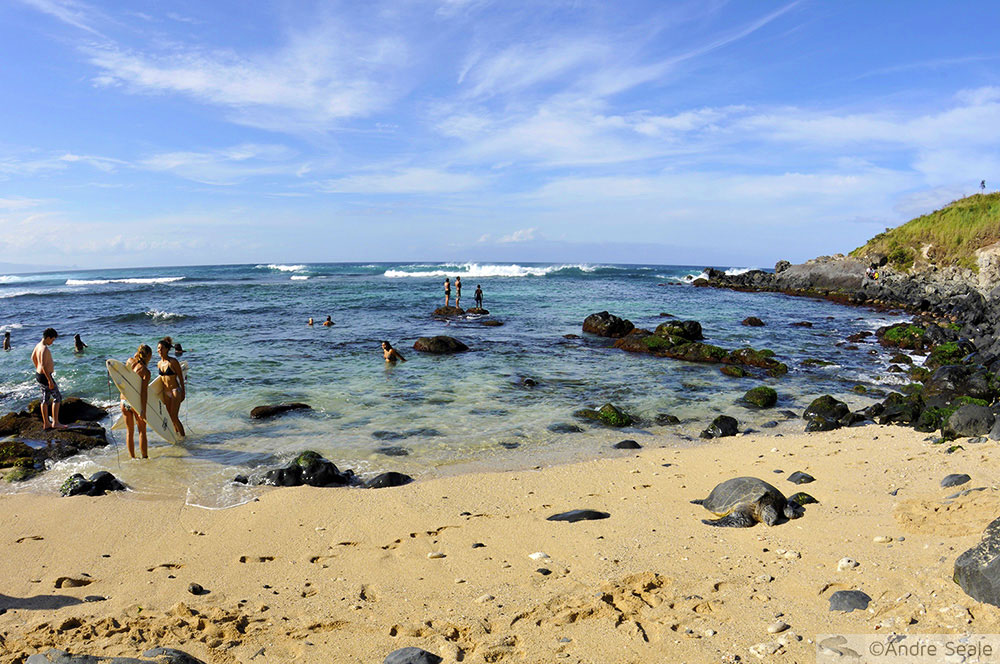 Praia de Hookipa - Maui - Havaí