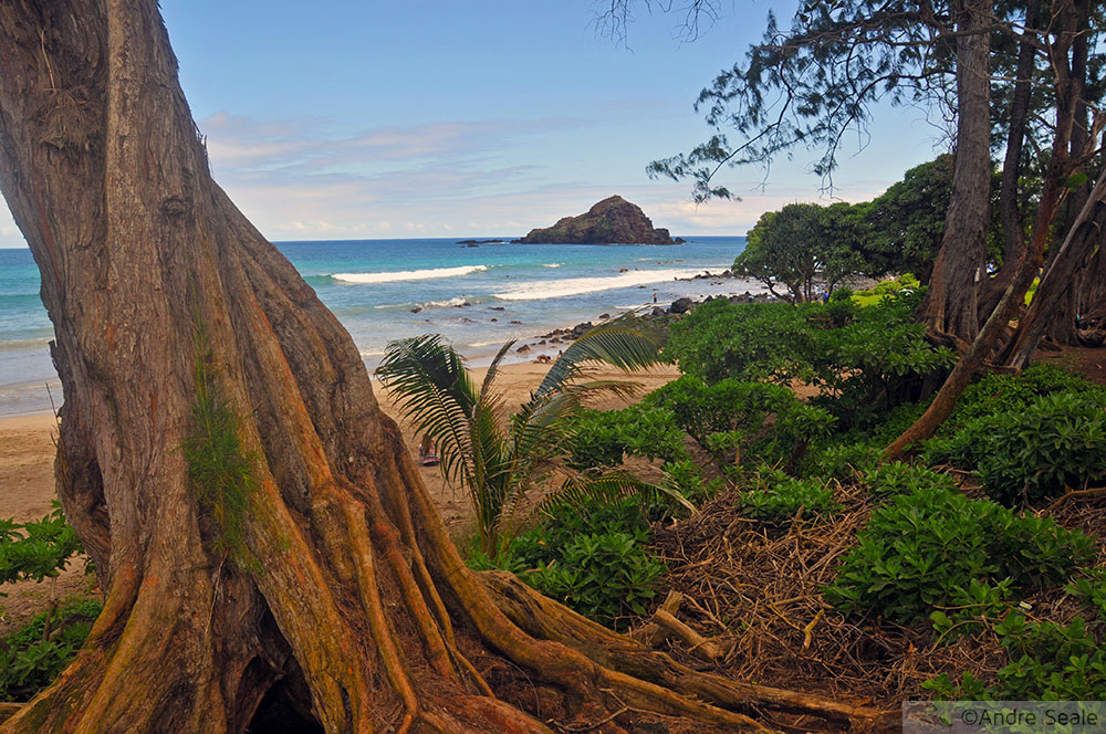 Hamoa Beach - melhores praias de Maui - Havaí