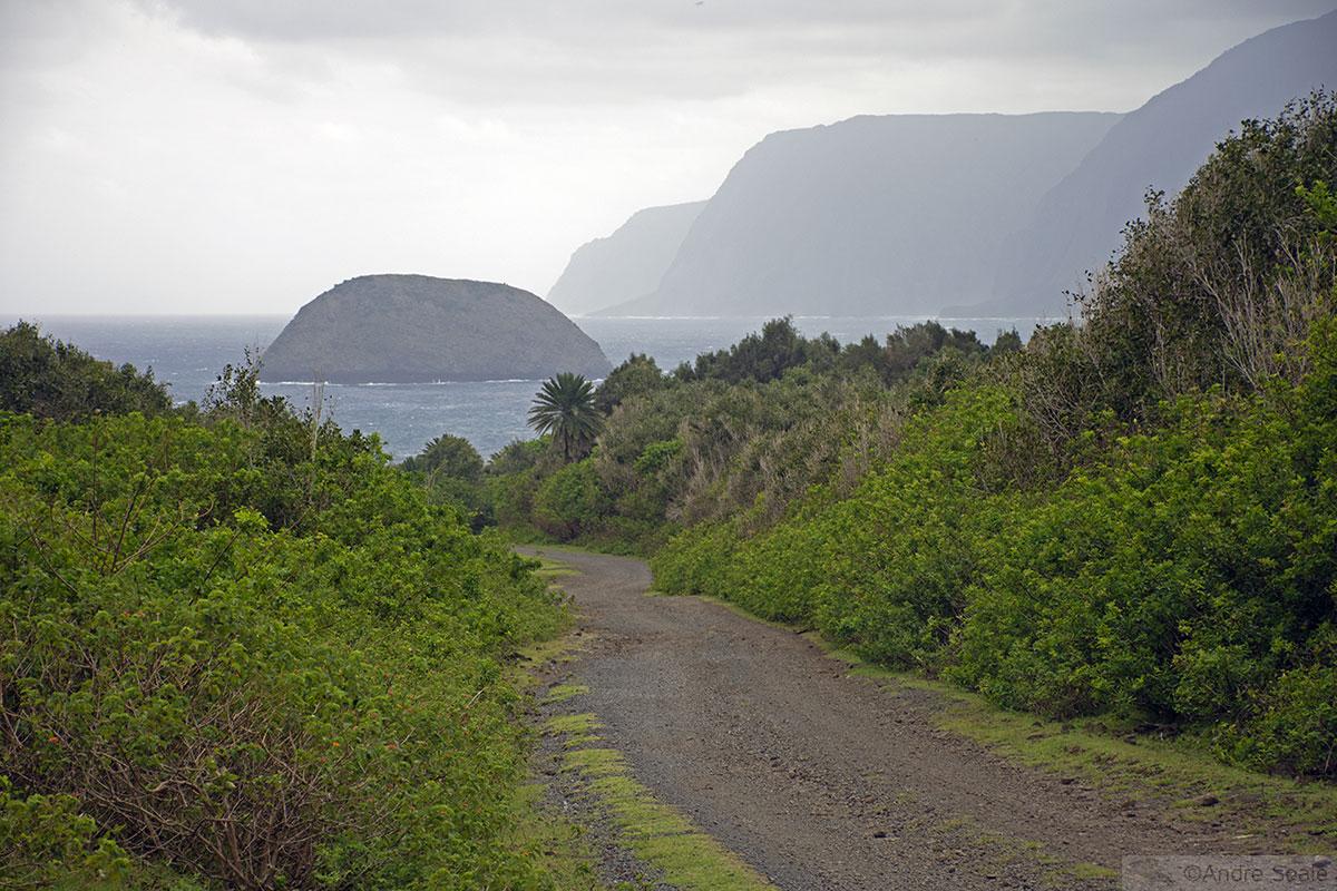 Estrada Damião - Kalaupapa - Molokai