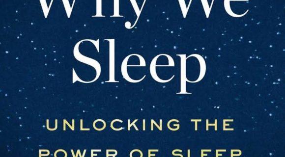 Por que nós dormimos